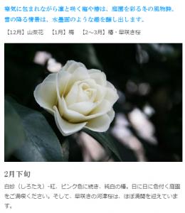 画像参照:http://hotel-chinzanso-tokyo.jp/garden/seasons.html