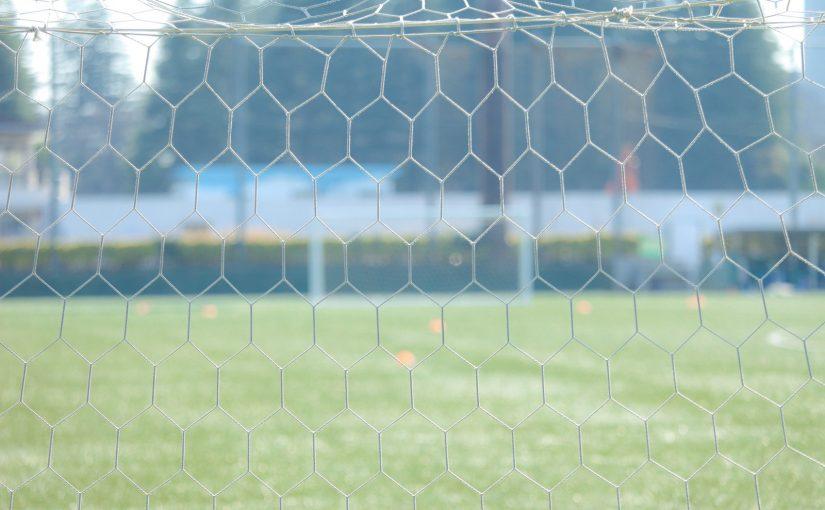【サッカー】いろいろなサポーターについて