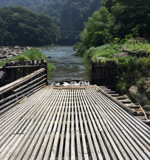 【食】夏の風物詩、鮎料理を利根川でたのしみました。